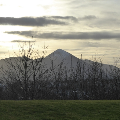 View from the tea table at Knockranny